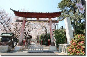 torii2014