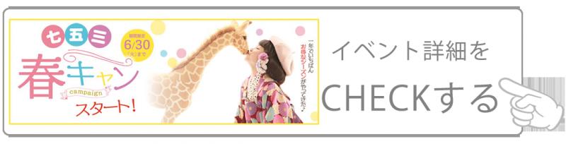 3-6月(七五三アイコン)