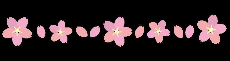 桜フレーム(ライン)
